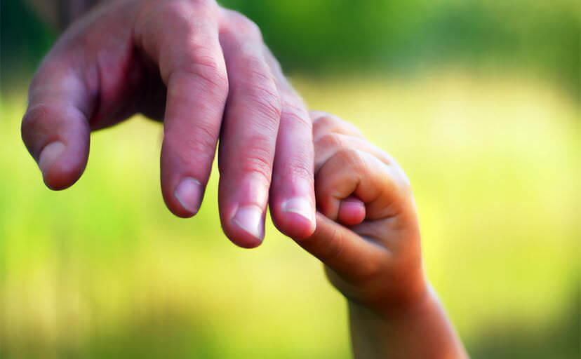親子の手(フリー写真)