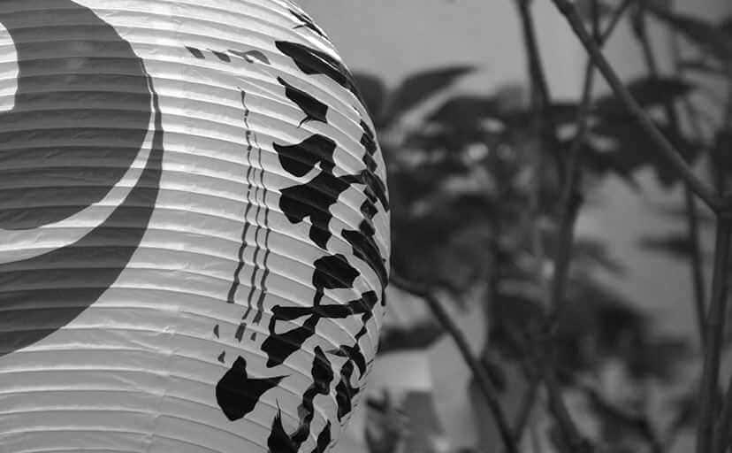 浅草の三社祭の提灯(フリー写真)
