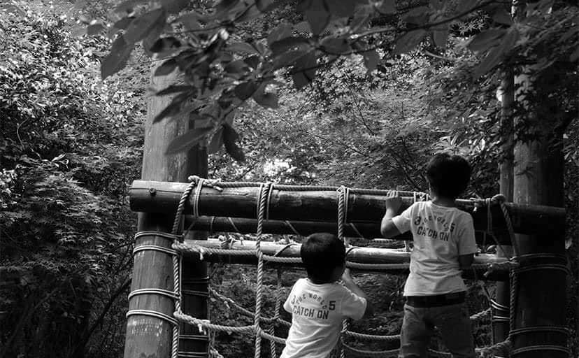 アスレチックで遊ぶ双子(フリー写真)