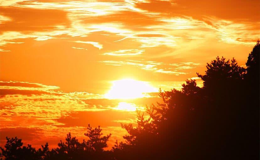 夕陽(フリー写真)