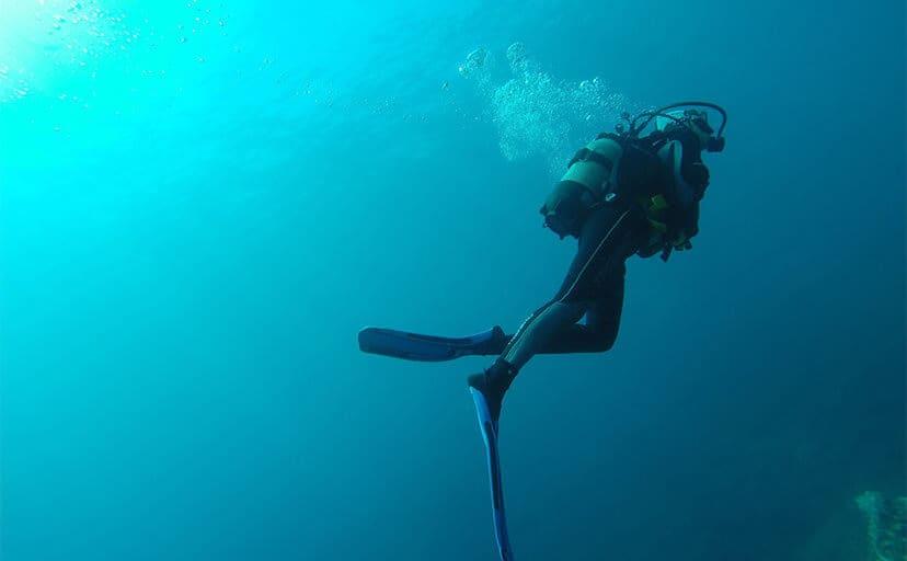 ダイビング(フリー写真)