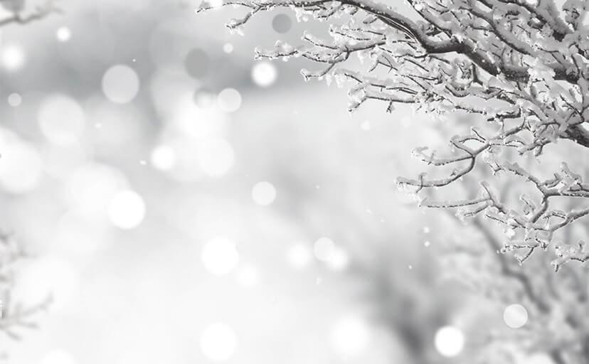 雪(フリー写真)