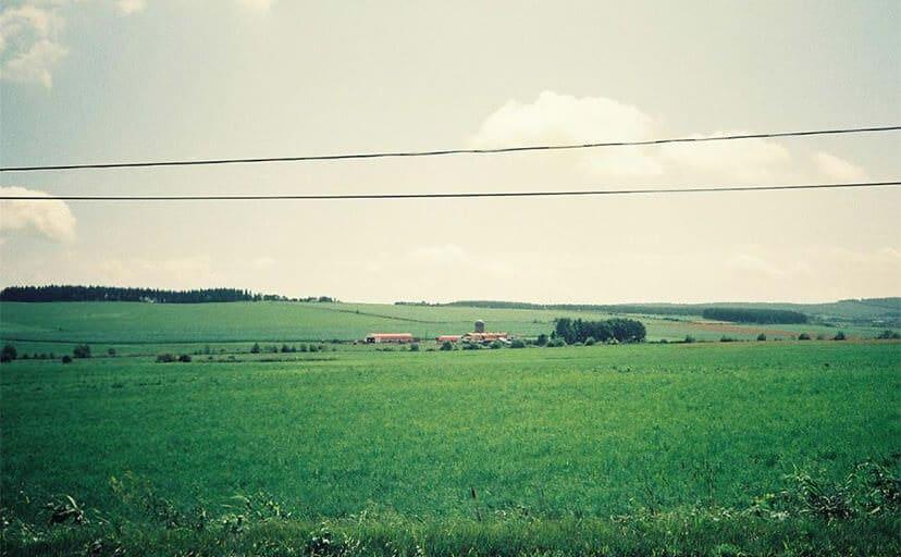 夏休みの情景(フリー写真)