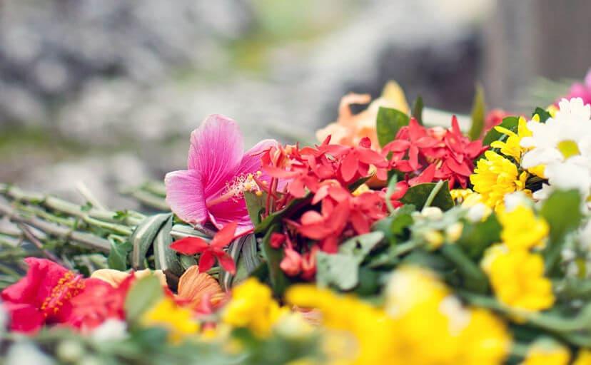 献花(フリー写真)