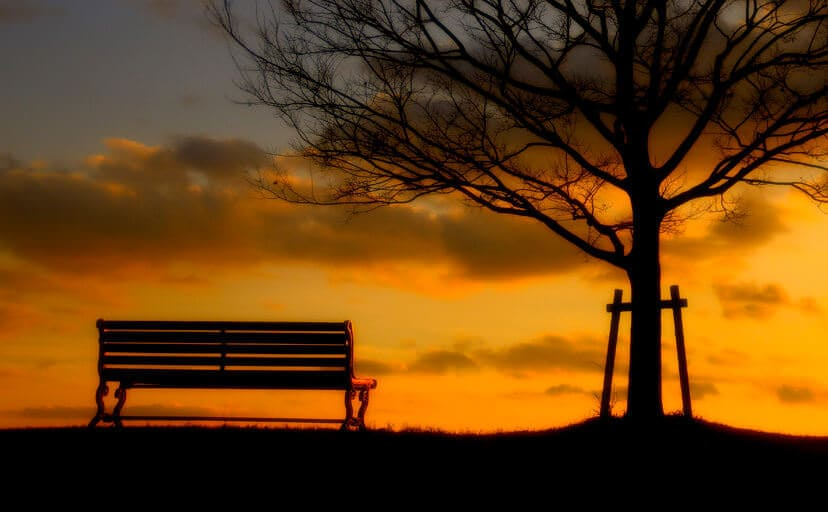 公園と夕暮れ(フリー写真)