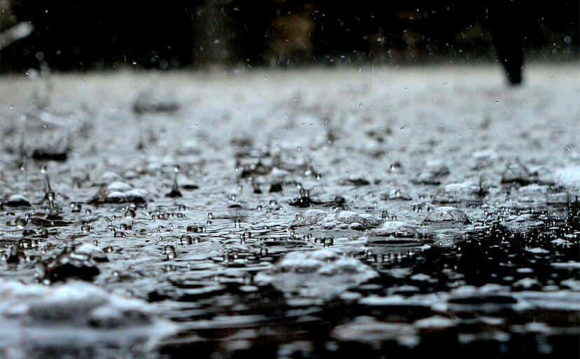 雨(フリー写真)
