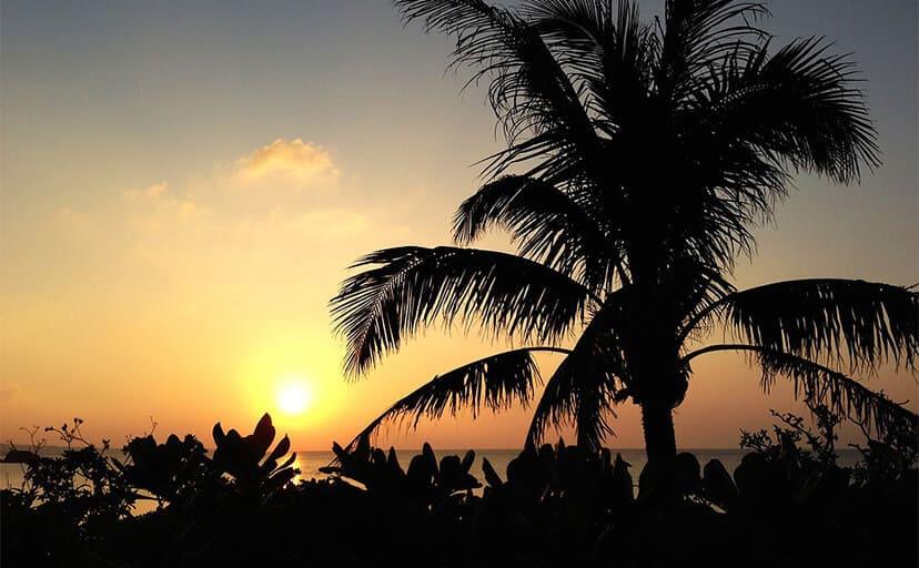 南国の夕日(フリー写真)